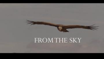 From the Sky Trailer