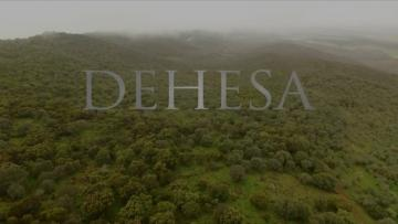 Dehesa (Trailer English)