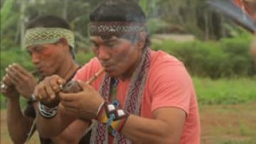 Ancestral Secrets. Keepers of Indigenous Medicine TRAILER